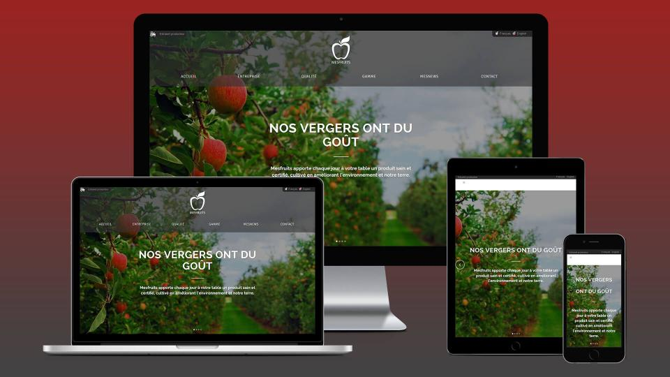 creation site internet cavaillon mesfruits